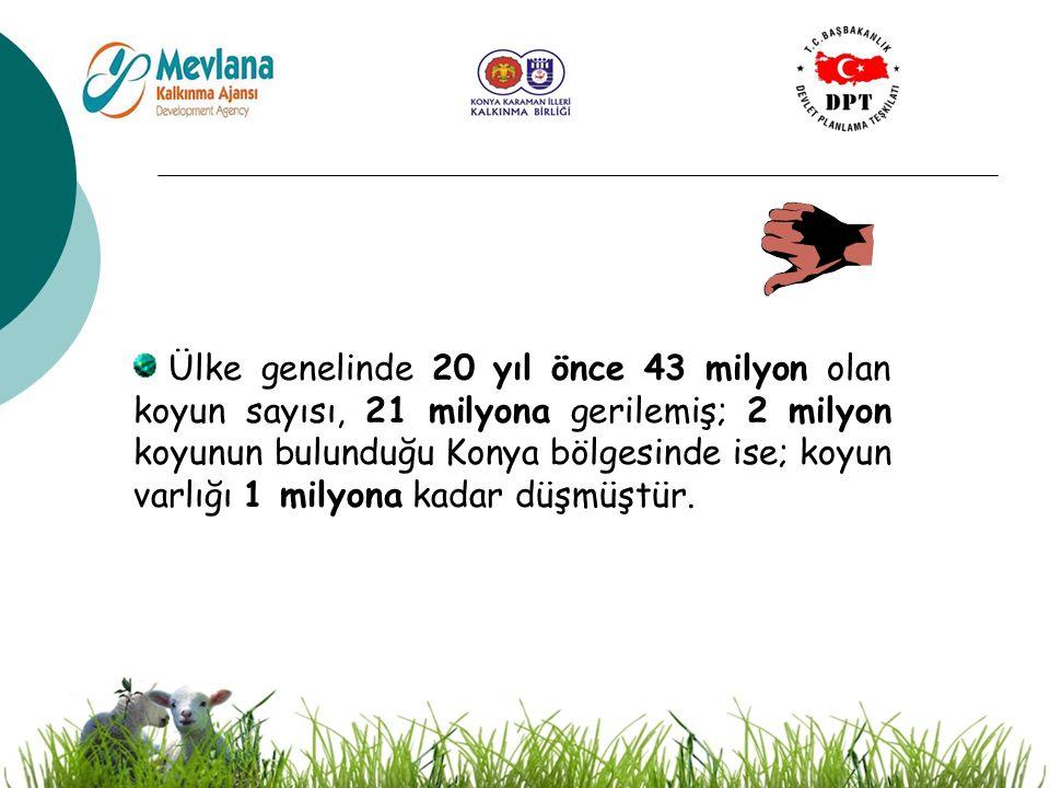 9 HEDEF BÖLGEDEKİ SORUNLAR Hayvan bakım – besleme ve koruyucu veterinerlik hizmetlerinin önemi yeterli altyapı olmadığından kavratılamamış, kapsanan bölgede her yıl salgın koyun hastalıkları gözlenmektedir.