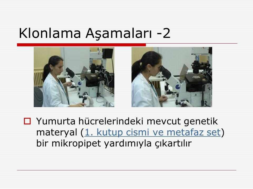 Klonlama Aşamaları -2  Yumurta hücrelerindeki mevcut genetik materyal (1. kutup cismi ve metafaz set) bir mikropipet yardımıyla çıkartılır1. kutup ci