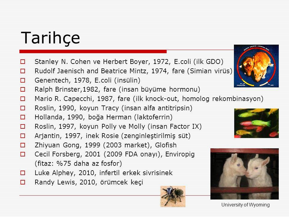 Tarihçe  Stanley N. Cohen ve Herbert Boyer, 1972, E.coli (ilk GDO)  Rudolf Jaenisch and Beatrice Mintz, 1974, fare (Simian virüs)  Genentech, 1978,