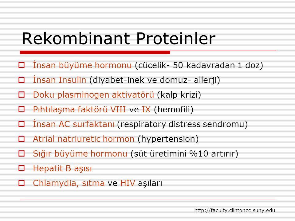 Rekombinant Proteinler  İnsan büyüme hormonu (cücelik- 50 kadavradan 1 doz)  İnsan Insulin (diyabet-inek ve domuz- allerji)  Doku plasminogen aktiv