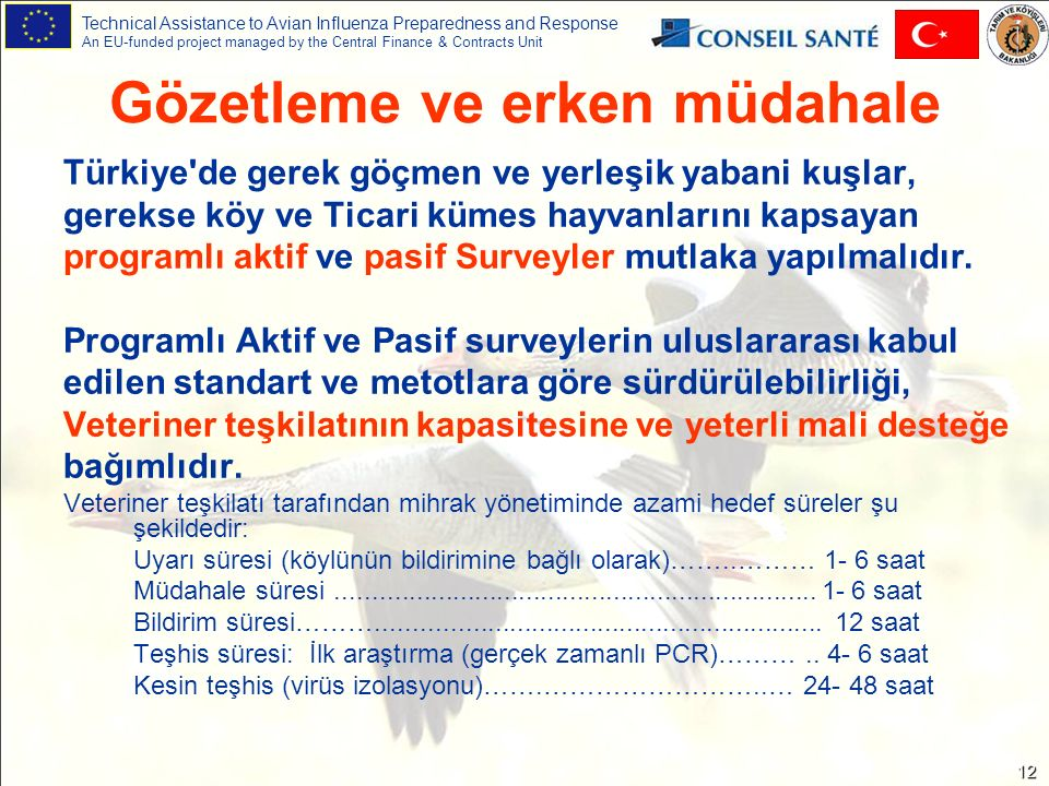 Technical Assistance to Avian Influenza Preparedness and Response An EU-funded project managed by the Central Finance & Contracts Unit 12 Gözetleme ve