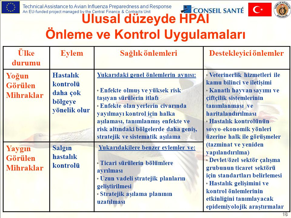 Technical Assistance to Avian Influenza Preparedness and Response An EU-funded project managed by the Central Finance & Contracts Unit 18 Ulusal düzey
