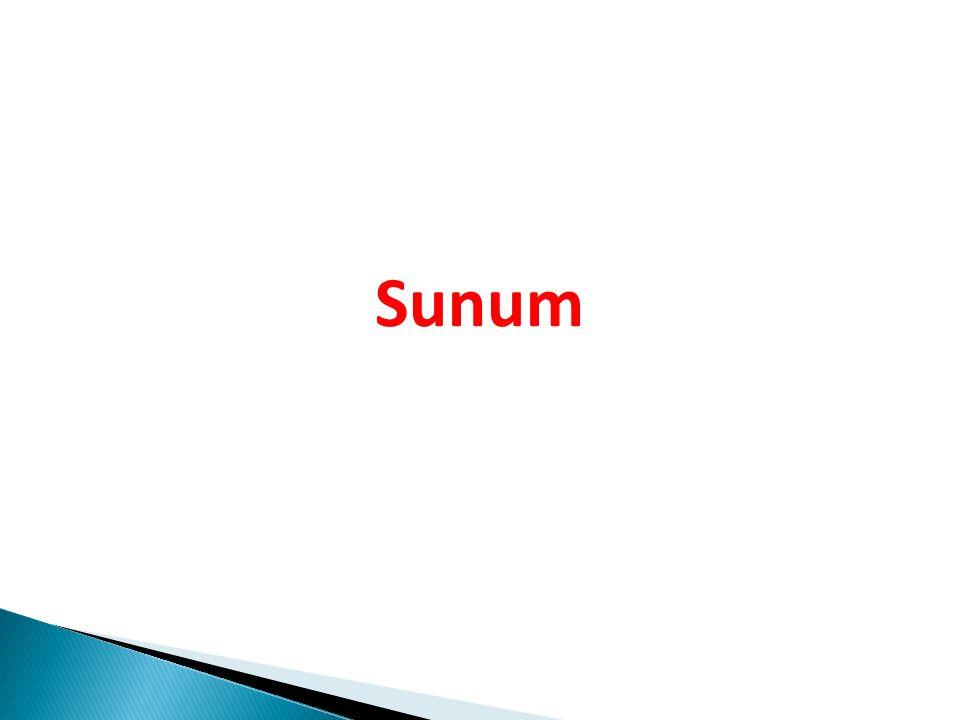 24.Aşağıdaki cümlelerin hangisinde ile (-le,-la), bağlaç görevinde kullanılmıştır.