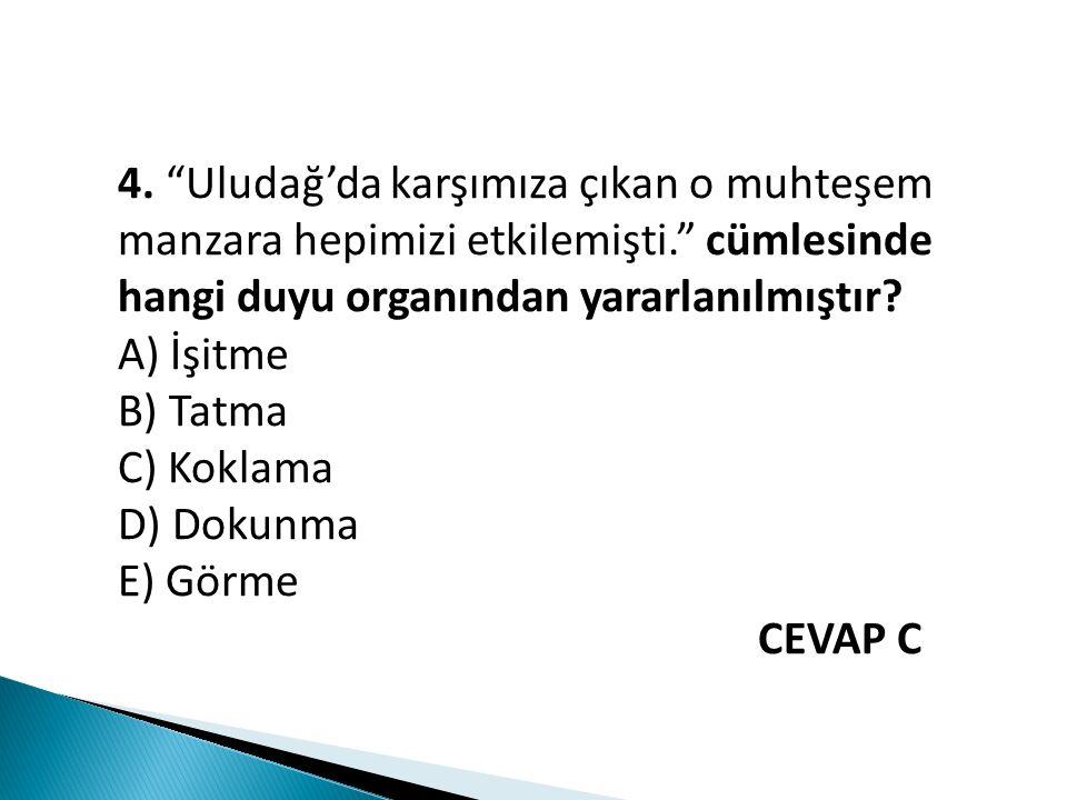 """4. """"Uludağ'da karşımıza çıkan o muhteşem manzara hepimizi etkilemişti."""" cümlesinde hangi duyu organından yararlanılmıştır? A) İşitme B) Tatma C) Kokla"""