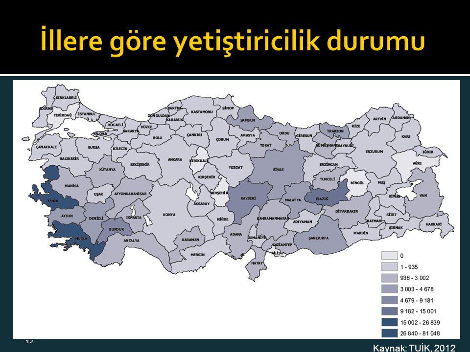 Kaynak: TUİK, 2012 12