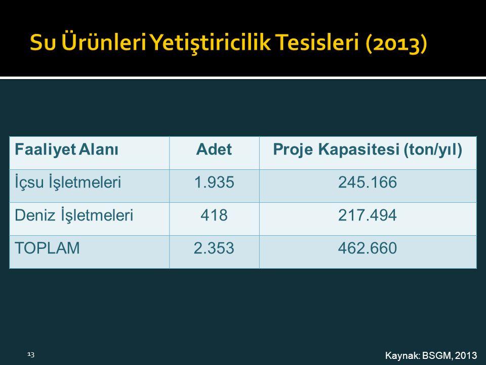 Faaliyet Alanı AdetProje Kapasitesi (ton/yıl) İçsu İşletmeleri 1.935245.166 Deniz İşletmeleri 418217.494 TOPLAM 2.353462.660 Kaynak: BSGM, 2013 13