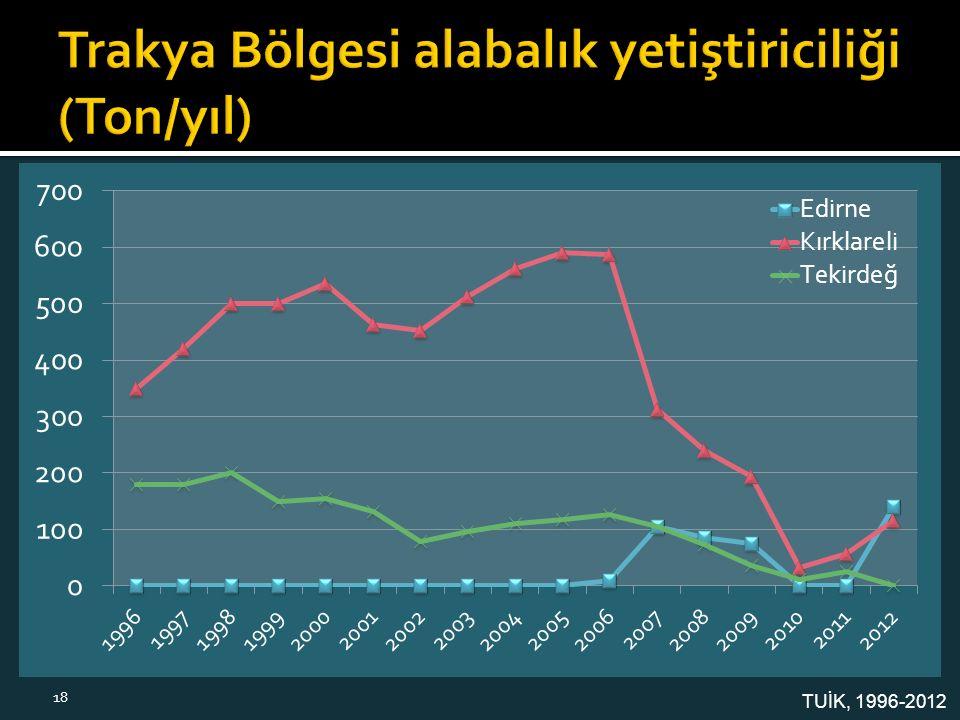 TUİK, 1996-2012 18