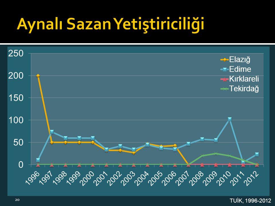 TUİK, 1996-2012 20