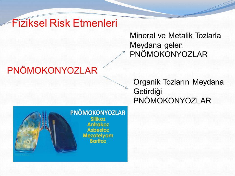 Fiziksel Risk Etmenleri PNÖMOKONYOZLAR Organik Tozların Meydana Getirdiği PNÖMOKONYOZLAR Mineral ve Metalik Tozlarla Meydana gelen PNÖMOKONYOZLAR