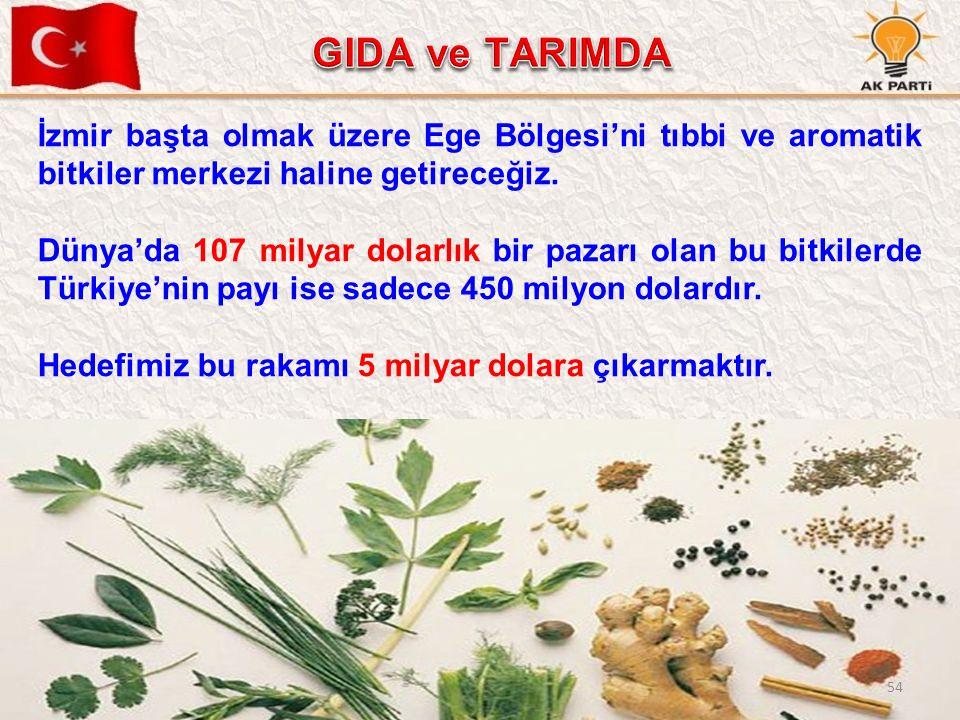 54 İzmir başta olmak üzere Ege Bölgesi'ni tıbbi ve aromatik bitkiler merkezi haline getireceğiz. Dünya'da 107 milyar dolarlık bir pazarı olan bu bitki