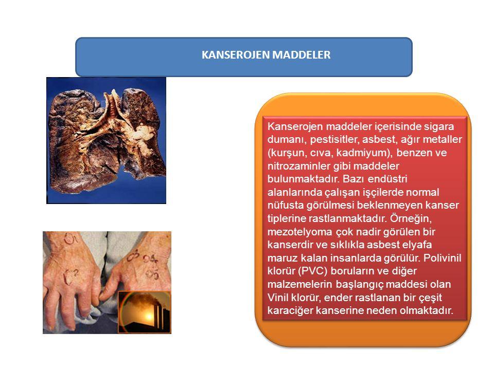 KANSEROJEN MADDELER Kanserojen maddeler içerisinde sigara dumanı, pestisitler, asbest, ağır metaller (kurşun, cıva, kadmiyum), benzen ve nitrozaminler gibi maddeler bulunmaktadır.