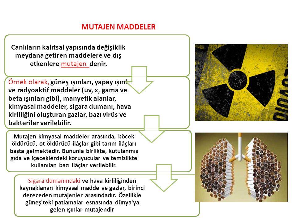 Canlıların kalıtsal yapısında değişiklik meydana getiren maddelere ve dış etkenlere mutajen denir.
