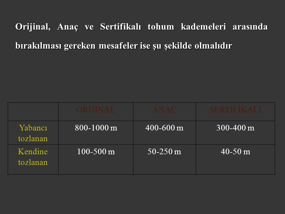 Orijinal, Anaç ve Sertifikalı tohum kademeleri arasında bırakılması gereken mesafeler ise şu şekilde olmalıdır ORİJİNALANAÇSERTİFİKALI Yabancı tozlanan 800-1000 m400-600 m300-400 m Kendine tozlanan 100-500 m50-250 m40-50 m