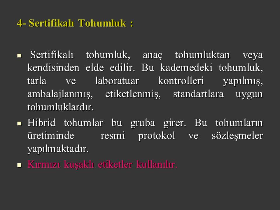 4- Sertifikalı Tohumluk : Sertifikalı tohumluk, anaç tohumluktan veya kendisinden elde edilir.