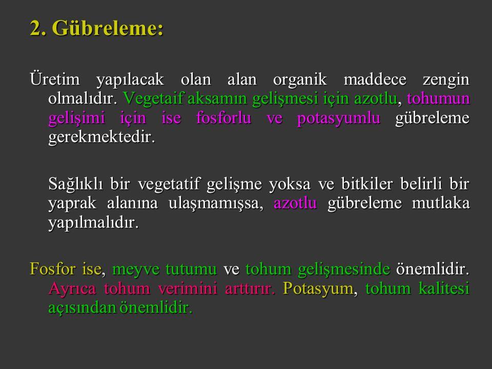 2. Gübreleme: Üretim yapılacak olan alan organik maddece zengin olmalıdır.