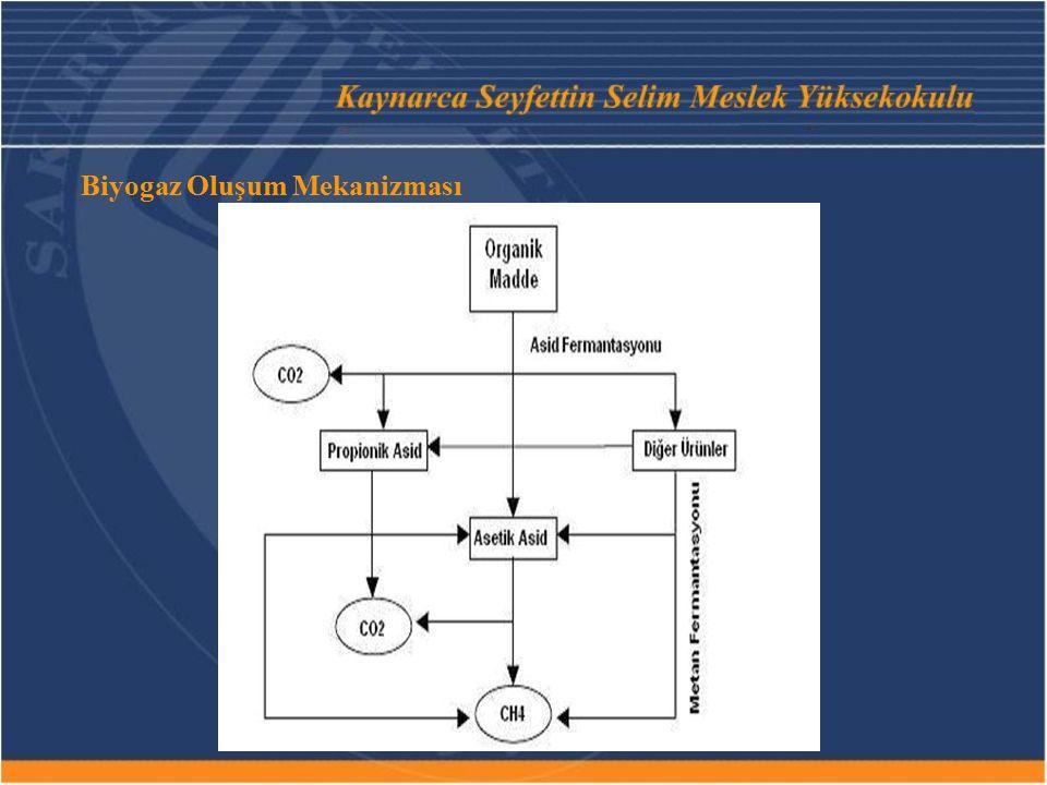 Biyogaz Oluşum Mekanizması