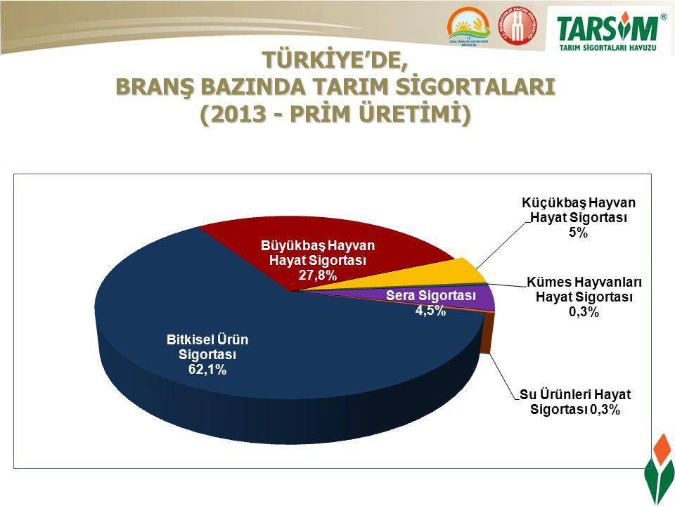 TÜRKİYE'DE, BRANŞ BAZINDA TARIM SİGORTALARI (2013 - PRİM ÜRETİMİ)