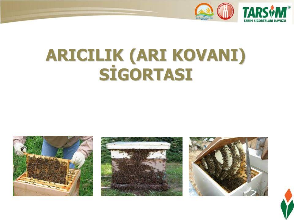 ARICILIK (ARI KOVANI) SİGORTASI
