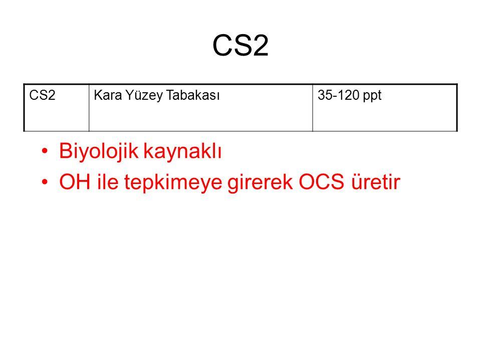 CS2 Kara Yüzey Tabakası35-120 ppt Biyolojik kaynaklı OH ile tepkimeye girerek OCS üretir