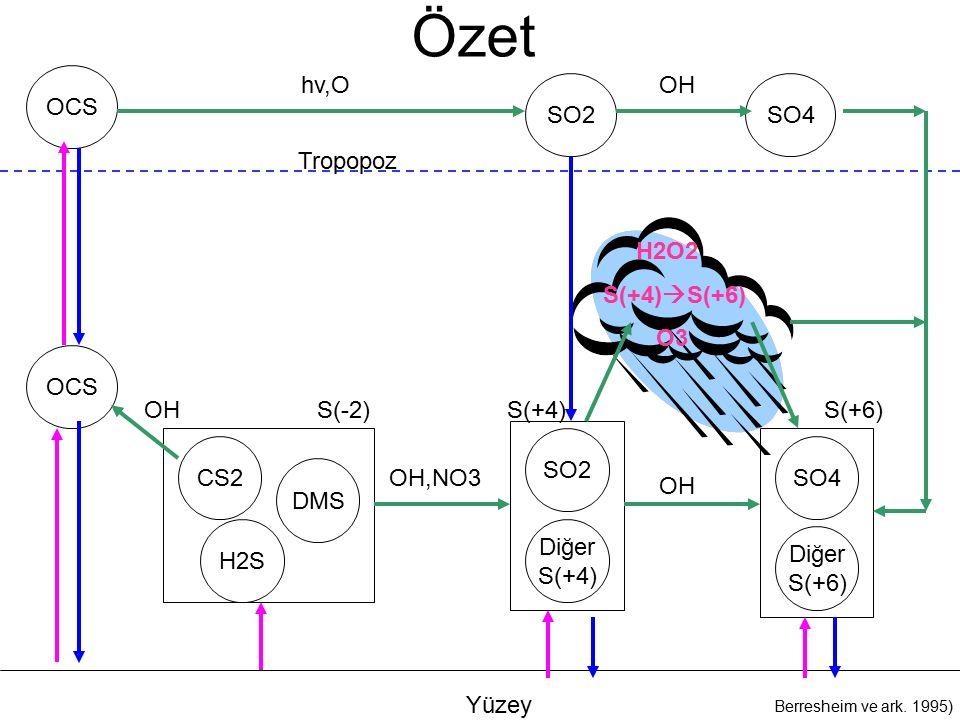 Özet Yüzey OCS CS2 H2S DMS SO4SO2 Berresheim ve ark.