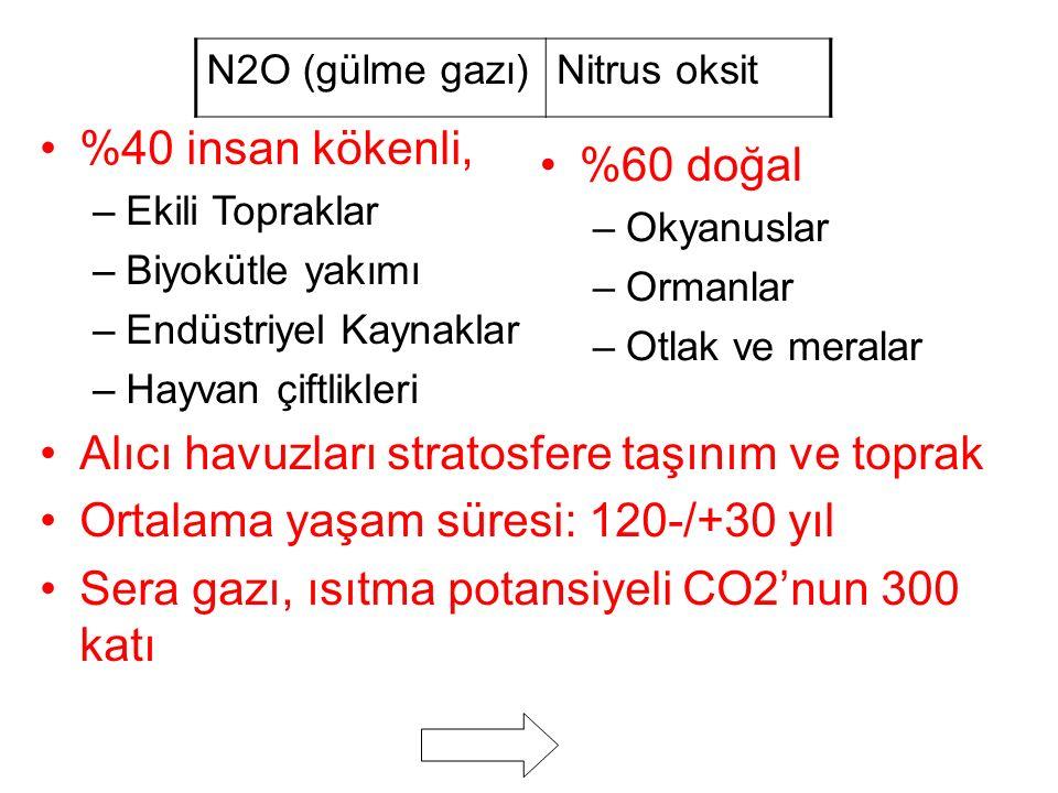 N2O (gülme gazı)Nitrus oksit %40 insan kökenli, –Ekili Topraklar –Biyokütle yakımı –Endüstriyel Kaynaklar –Hayvan çiftlikleri Alıcı havuzları stratosfere taşınım ve toprak Ortalama yaşam süresi: 120-/+30 yıl Sera gazı, ısıtma potansiyeli CO2'nun 300 katı %60 doğal –Okyanuslar –Ormanlar –Otlak ve meralar
