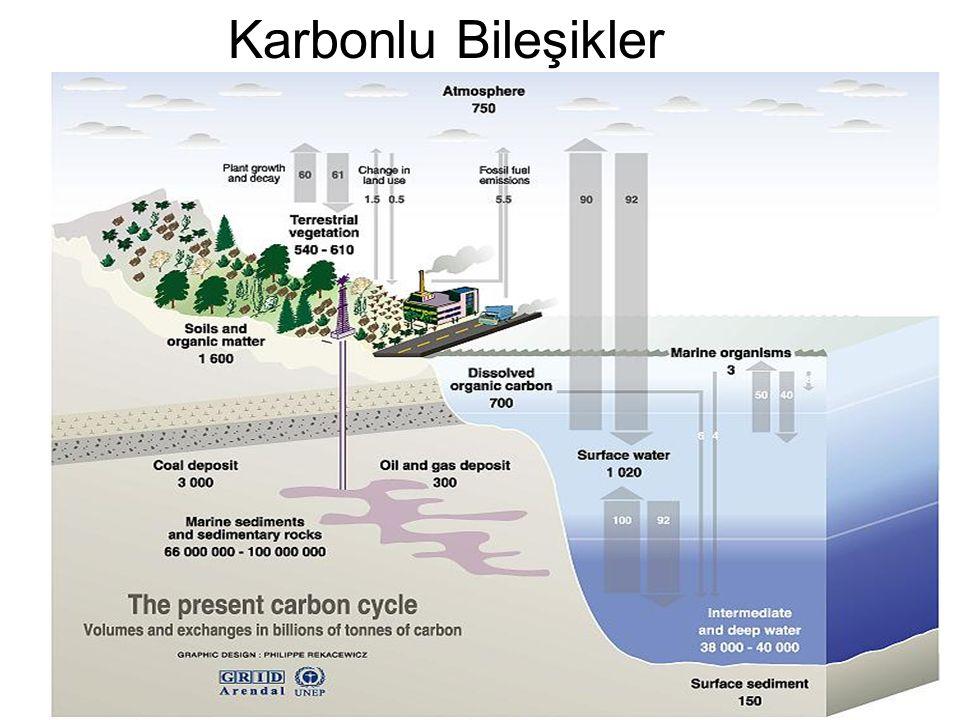 Karbonlu Bileşikler