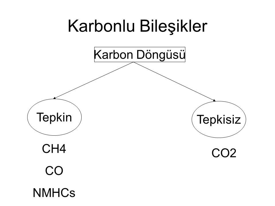 Karbon Döngüsü Tepkin Tepkisiz CO2 CH4 CO NMHCs