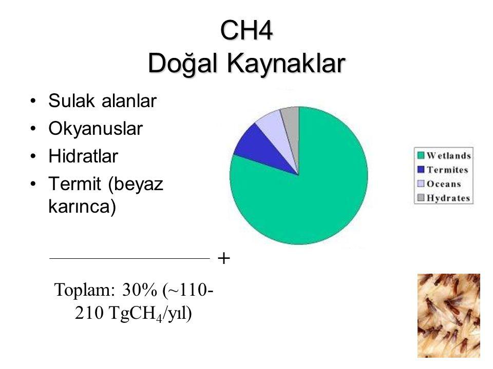 CH4 Doğal Kaynaklar Sulak alanlar Okyanuslar Hidratlar Termit (beyaz karınca) + Toplam: 30% (~110- 210 TgCH 4 /yıl)