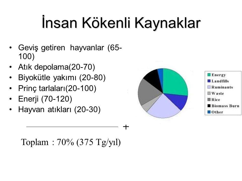 İnsan Kökenli Kaynaklar Geviş getiren hayvanlar (65- 100) Atık depolama(20-70) Biyokütle yakımı (20-80) Prinç tarlaları(20-100) Enerji (70-120) Hayvan atıkları (20-30) + Toplam : 70% (375 Tg/yıl)