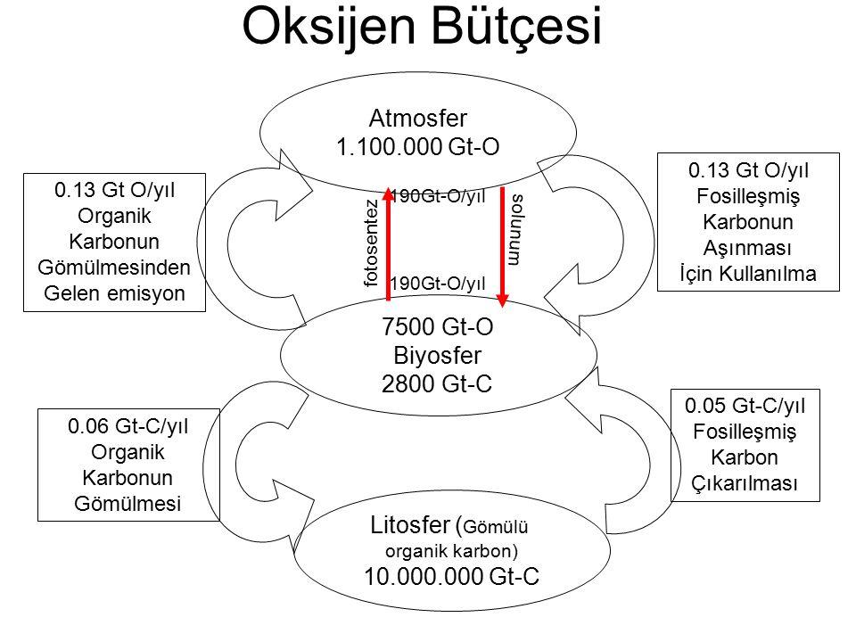 Oksijen Bütçesi Atmosfer 1.100.000 Gt-O 7500 Gt-O Biyosfer 2800 Gt-C Litosfer ( Gömülü organik karbon) 10.000.000 Gt-C fotosentez solunum 190Gt-O/yıl 0.13 Gt O/yıl Organik Karbonun Gömülmesinden Gelen emisyon 0.06 Gt-C/yıl Organik Karbonun Gömülmesi 0.13 Gt O/yıl Fosilleşmiş Karbonun Aşınması İçin Kullanılma 0.05 Gt-C/yıl Fosilleşmiş Karbon Çıkarılması