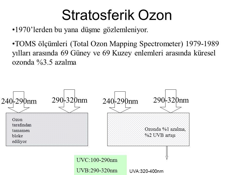 Stratosferik Ozon 1970'lerden bu yana düşme gözlemleniyor.