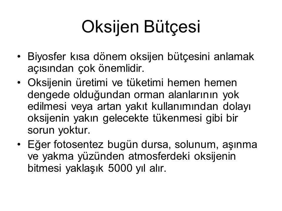 Oksijen Bütçesi Biyosfer kısa dönem oksijen bütçesini anlamak açısından çok önemlidir.
