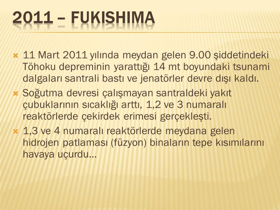  11 Mart 2011 yılında meydan gelen 9.00 şiddetindeki Töhoku depreminin yarattığı 14 mt boyundaki tsunami dalgaları santrali bastı ve jenatörler devre