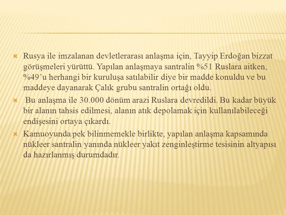  Rusya ile imzalanan devletlerarası anlaşma için, Tayyip Erdoğan bizzat görüşmeleri yürüttü. Yapılan anlaşmaya santralin %51 Ruslara aitken, %49'u he
