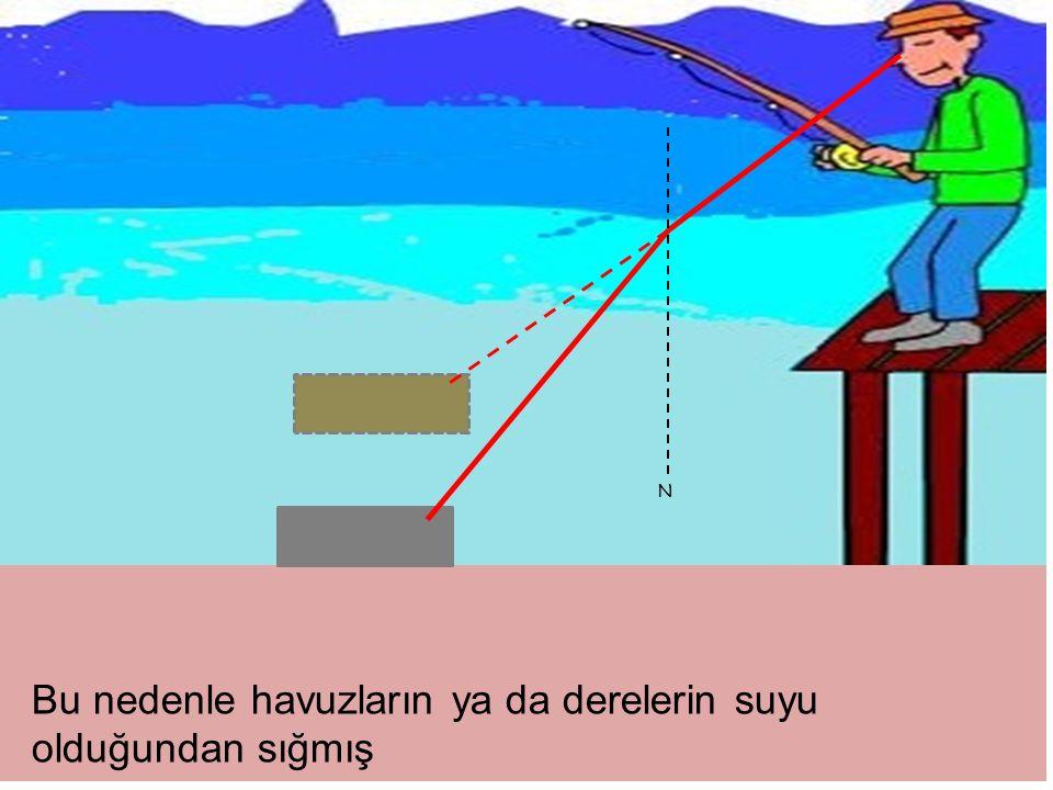 Bu nedenle havuzların ya da derelerin suyu olduğundan sığmış N