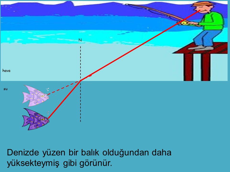 N hava su Denizde yüzen bir balık olduğundan daha yüksekteymiş gibi görünür.