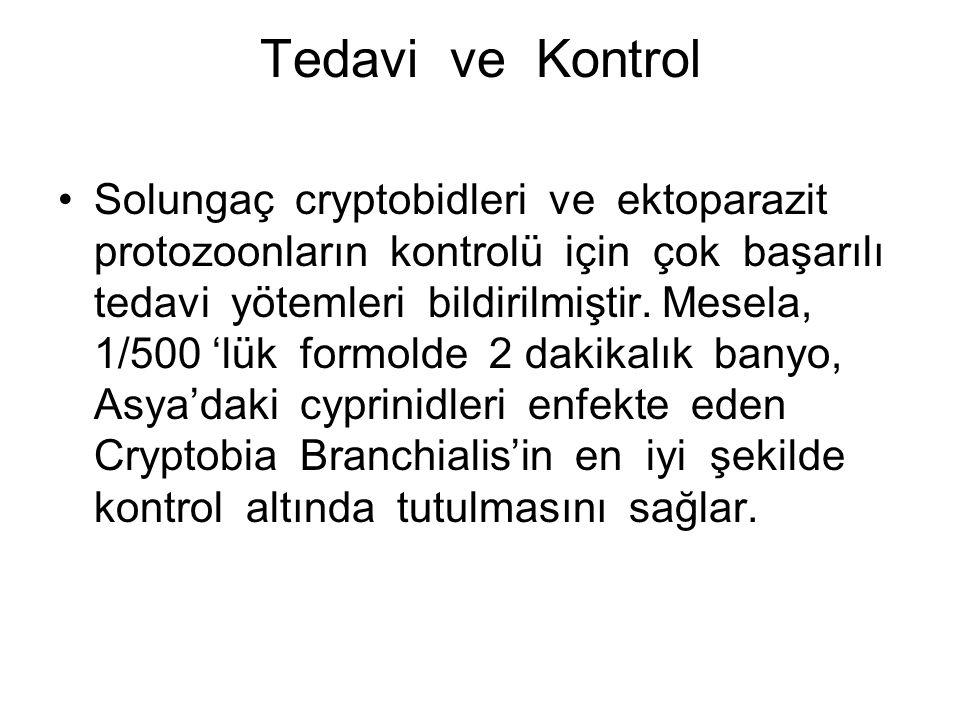 Tedavi ve Kontrol Solungaç cryptobidleri ve ektoparazit protozoonların kontrolü için çok başarılı tedavi yötemleri bildirilmiştir.