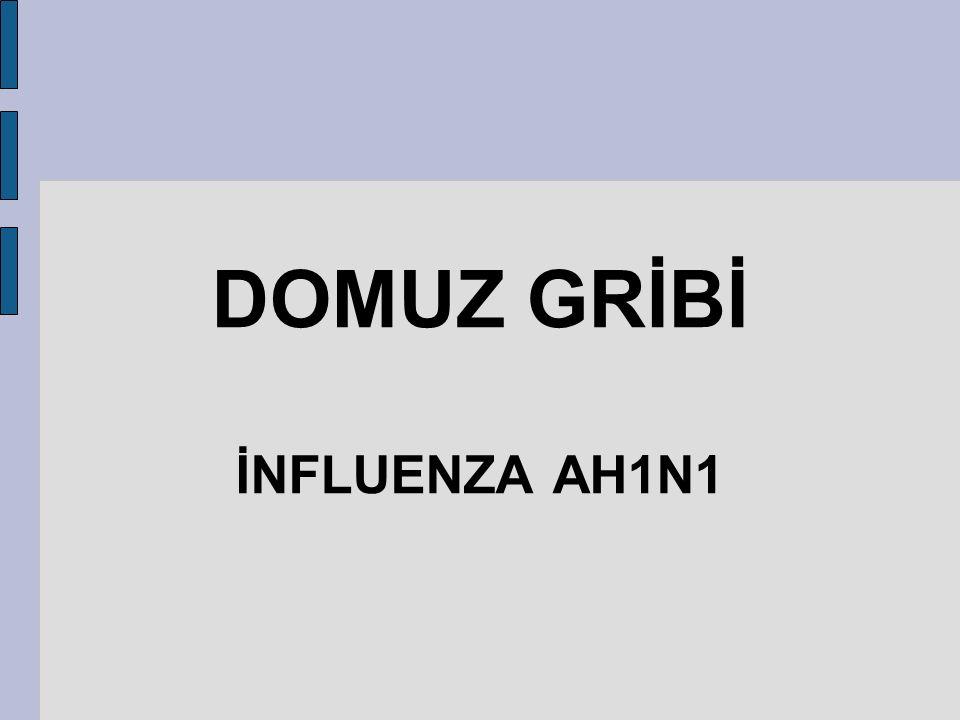DOMUZ GRİBİ İNFLUENZA AH1N1