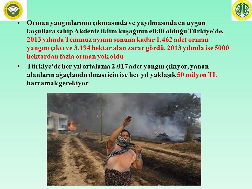 Orman yangınlarının çıkmasında ve yayılmasında en uygun koşullara sahip Akdeniz iklim kuşağının etkili olduğu Türkiye'de, 2013 yılında Temmuz ayının s