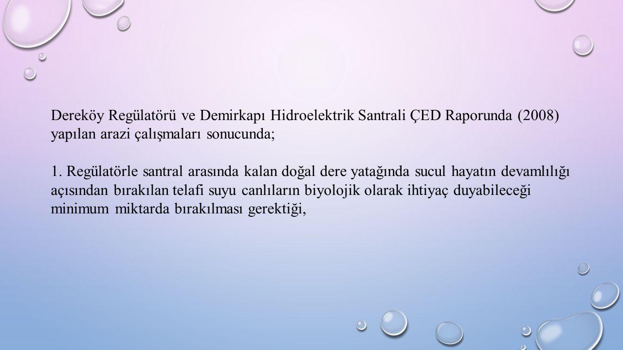 Dereköy Regülatörü ve Demirkapı Hidroelektrik Santrali ÇED Raporunda (2008) yapılan arazi çalışmaları sonucunda; 1. Regülatörle santral arasında kalan