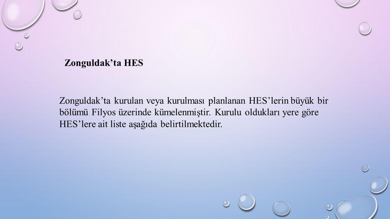 Zonguldak'ta kurulan veya kurulması planlanan HES'lerin büyük bir bölümü Filyos üzerinde kümelenmiştir. Kurulu oldukları yere göre HES'lere ait liste