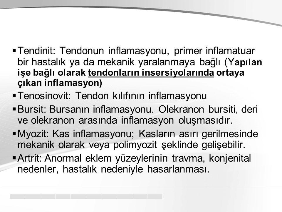  Tendinit: Tendonun inflamasyonu, primer inflamatuar bir hastalık ya da mekanik yaralanmaya bağlı (Y apılan işe bağlı olarak tendonların insersiyolar