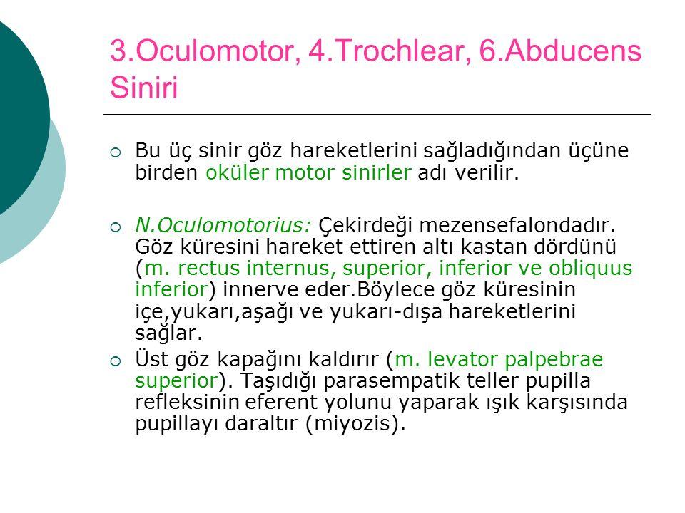 3.Oculomotor, 4.Trochlear, 6.Abducens Siniri  Bu üç sinir göz hareketlerini sağladığından üçüne birden oküler motor sinirler adı verilir.  N.Oculomo