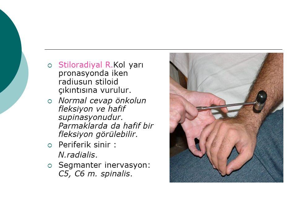  Stiloradiyal R.Kol yarı pronasyonda iken radiusun stiloid çıkıntısına vurulur.  Normal cevap önkolun fleksiyon ve hafif supinasyonudur. Parmaklarda