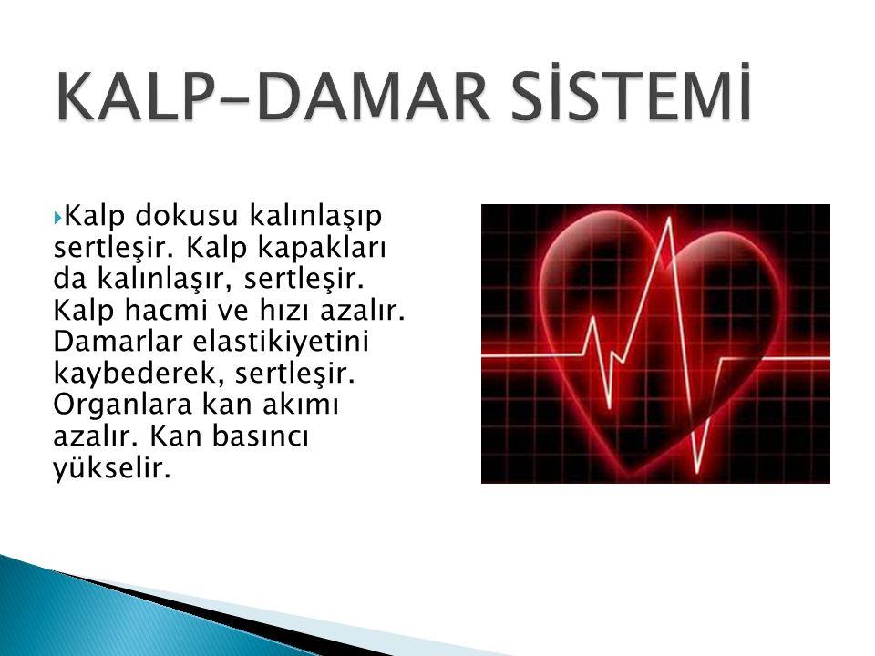  Kalp dokusu kalınlaşıp sertleşir. Kalp kapakları da kalınlaşır, sertleşir.