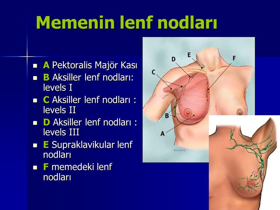 Lenfatik yapı Aksiller lenf nodlarına, memenin dış kadranından, göğüs bölgesinden ve karın duvarlarından gelen yüzeyel lenf damarları ve üst ekstremitenin lenf damarlarından gelen lenf sıvısı dökülmektedir.