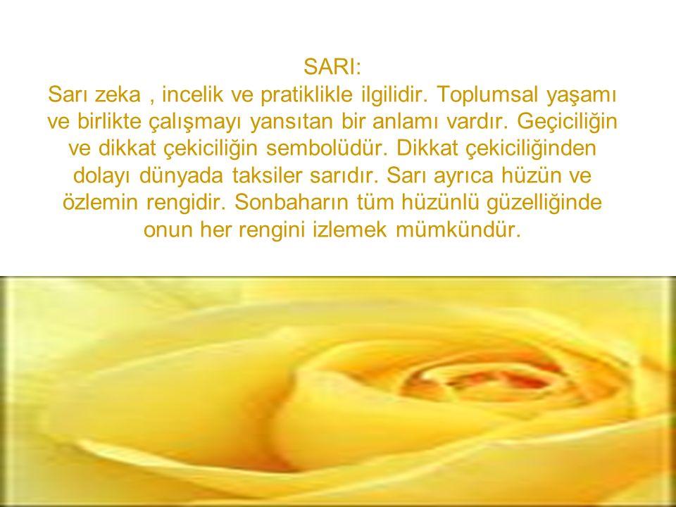 SARI: Sarı zeka, incelik ve pratiklikle ilgilidir. Toplumsal yaşamı ve birlikte çalışmayı yansıtan bir anlamı vardır. Geçiciliğin ve dikkat çekiciliği