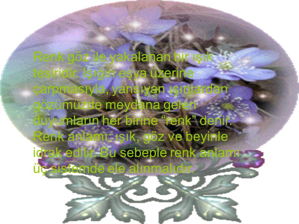 a- Psikolojik sistemde renk: Beynimizde uyanan bir durumdur. Mavi duyum gibi.