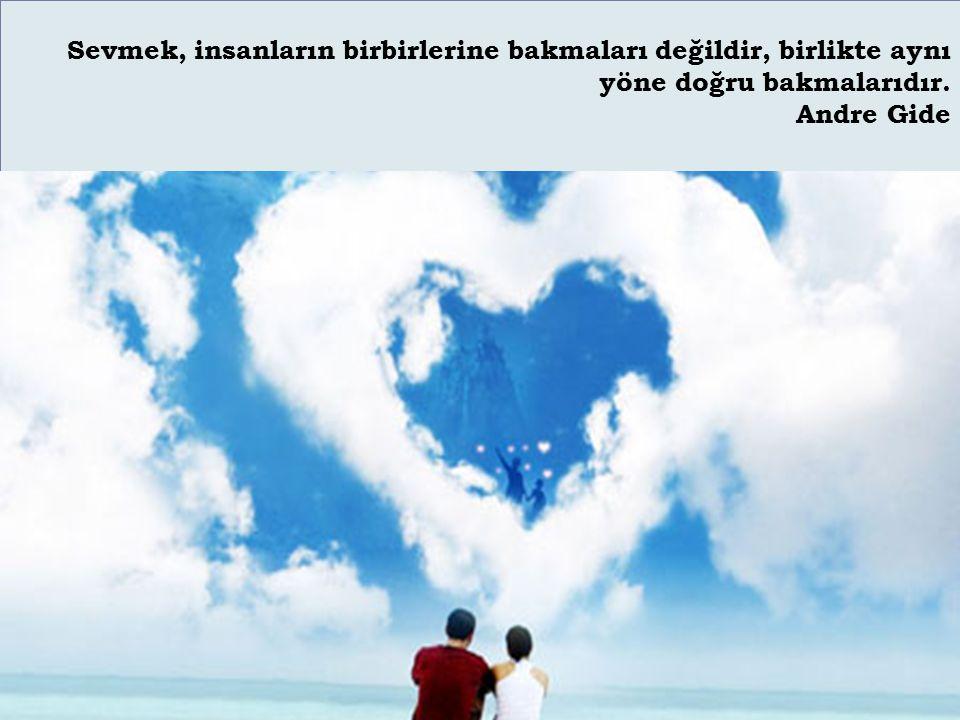 Sevmek, insanların birbirlerine bakmaları değildir, birlikte aynı yöne doğru bakmalarıdır. Andre Gide