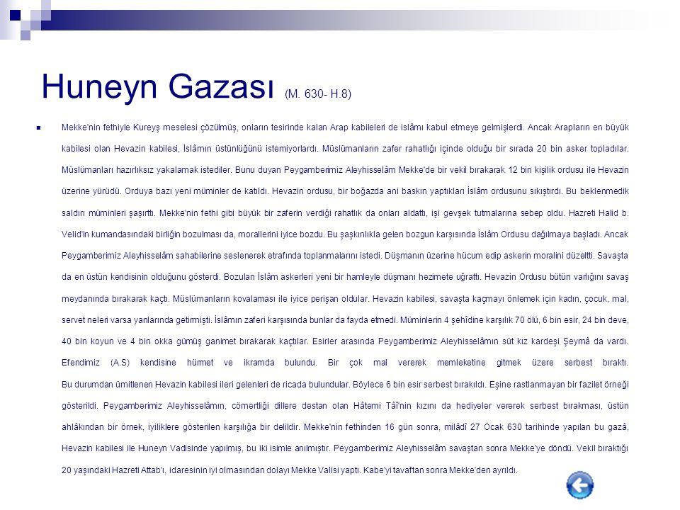Huneyn Gazası (M.